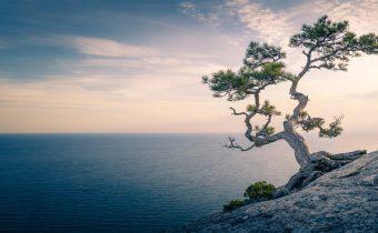 Hartritme Meditatie